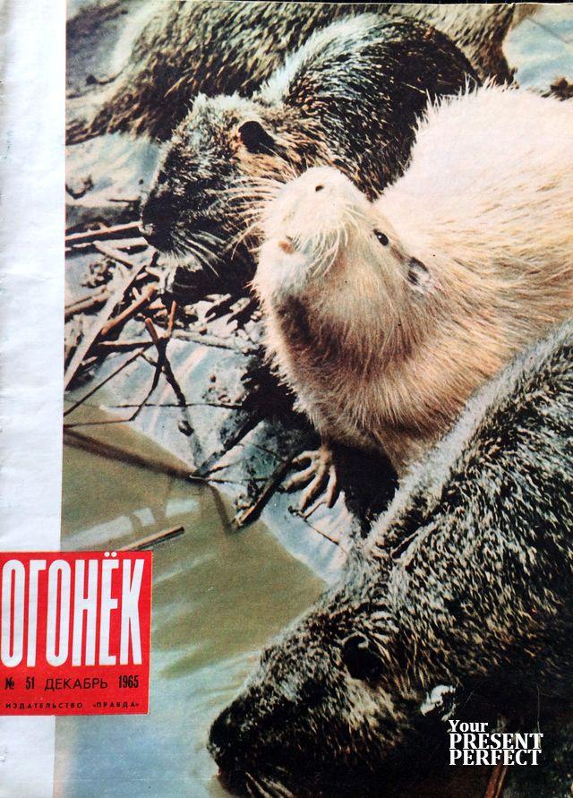 Журнал Огонек №51 декабрь 1965