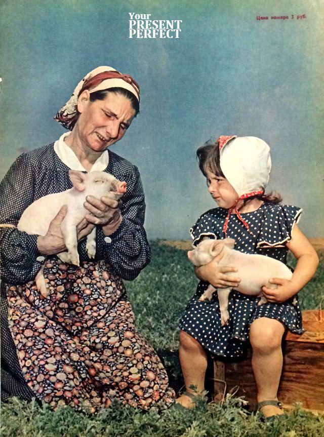 1956. Знатная свинарка Александра Даниловна Кривоконь с внучкой Галочкой. Колхоз имени Молотова, Ново-Орского района, Чкаловской области.