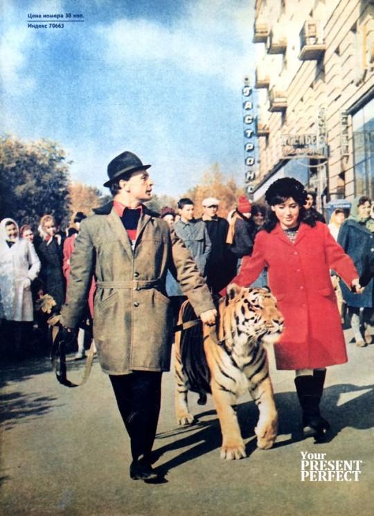 Дрессировщики Марица и Вальтер Запашные; выступающие в новом цирке Волгограда, на прогулке с тигром Тайфуном. 1968 год.