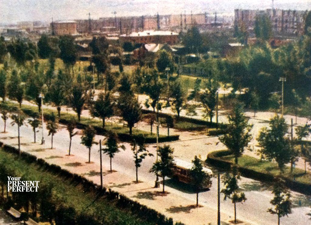 1956. Так выглядит стройка, когда смотришь на нее с Ленинских гор.